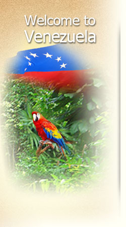 bg_school_venezuela
